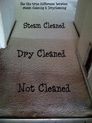 Carpet Cleaner Melbourne