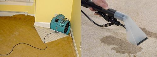 Wet Carpet Cleaning and Drying Melbourne
