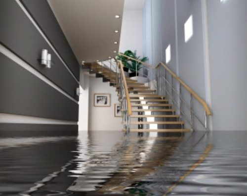 Water Damage Flood Restoration Alphington