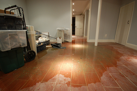 Water Damage Flood Restoration Barkstead