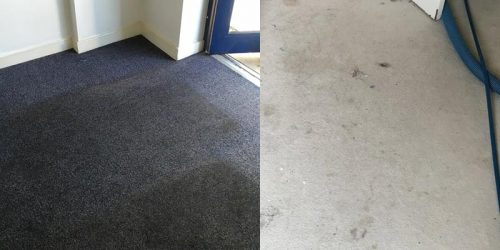 Carpet Cleaning Bungal