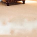 steamed-carpet-cleaner