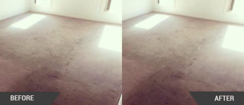 Carpet Cleaning Bulleen