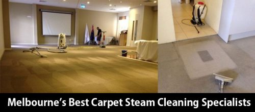 Melbourne's Best Carpet Steam Cleaning Specialists