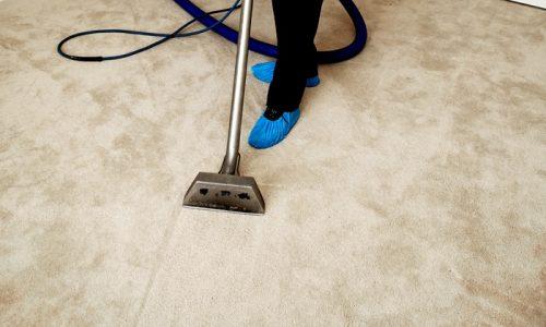 deluxe carpet