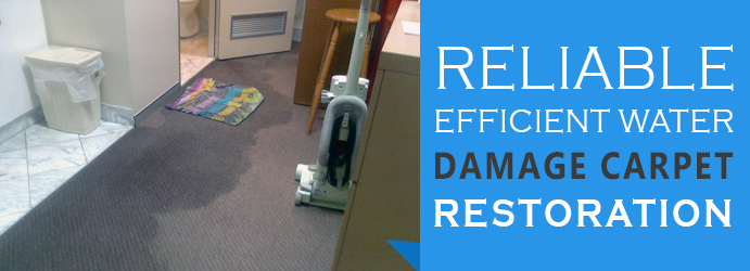 Perfect Water Damage Restoration Services Bayswater
