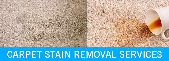 Carpet Stain Removal Services Budgeree