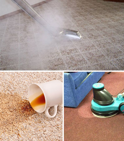 Carpet Cleaning Springbrook