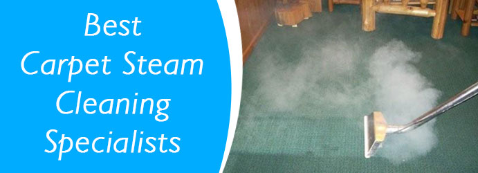 Carpet Steam Cleaning Mitchell Park