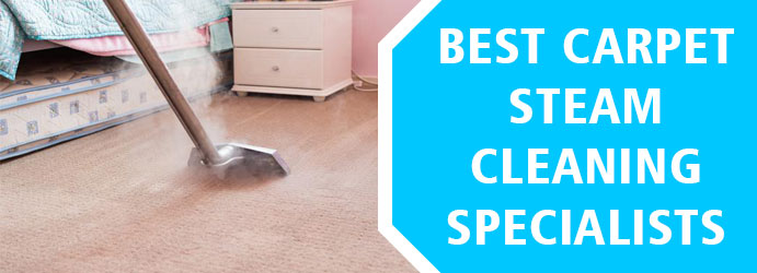 Carpet Steam Cleaning Glossodia