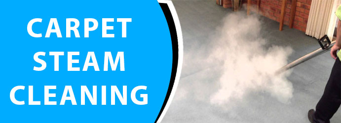 Carpet Steam Cleaning Box Head