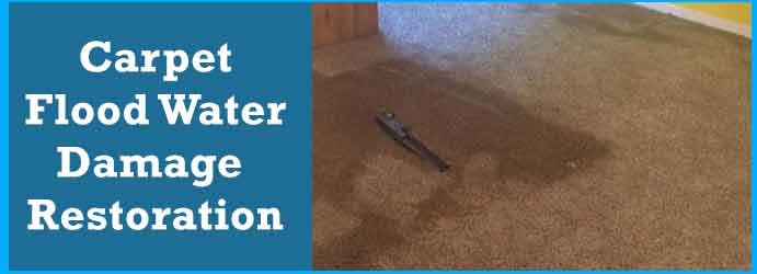 Carpet Flood Water Damage Restoration in Walliston