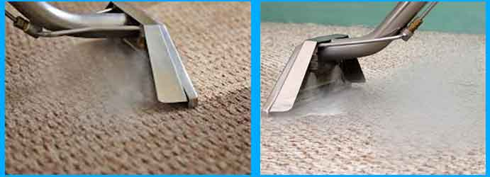 Carpet Cleaning Willagee