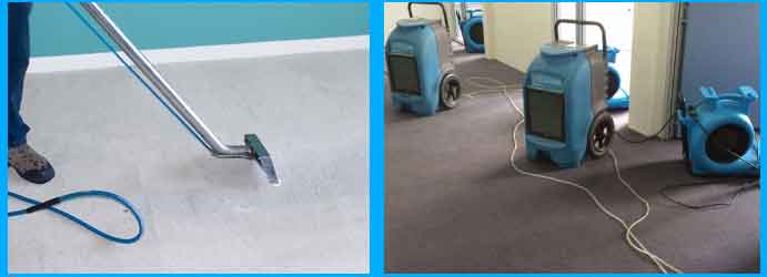 Drying Carpet Cleaning Service
