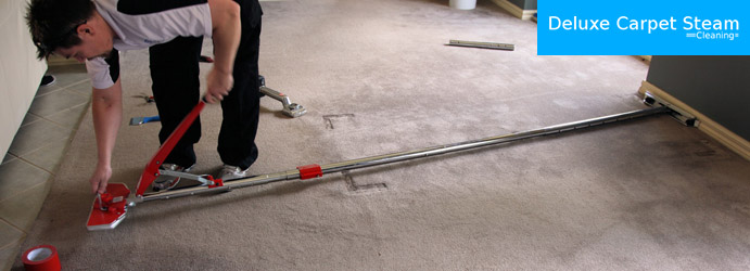 Professional Carpet Repair Willagee