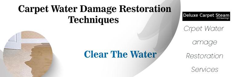 Carpet Water Damage Restoration Services