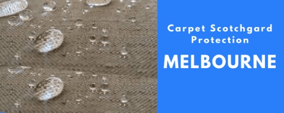 Carpet Scotchgard Protection Medlyn