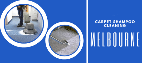 Carpet shampooing Cleaning Melton