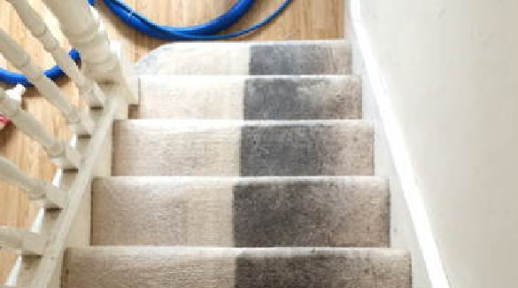 Experience Carpet Cleaning