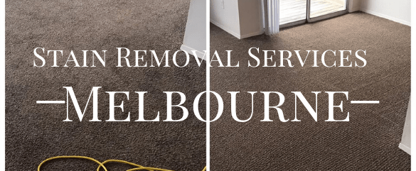 Stain Removal Service Hazelwood North